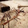 crown of thorns of the Christ